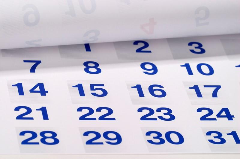 Tax Diary November/December 2020